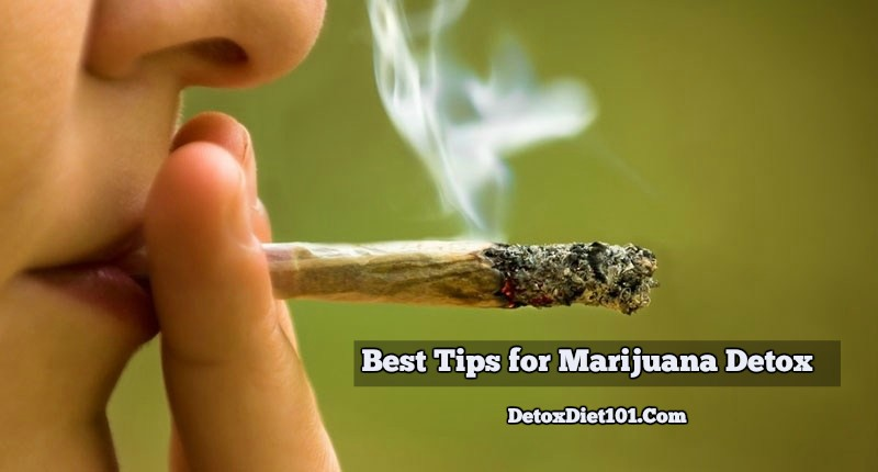 Best Tips for Marijuana Detox